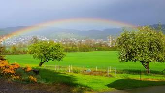 Regenbogen über Gontenschwil