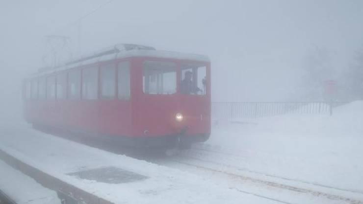 Im Nebel übersah der Tourist die Bahn.