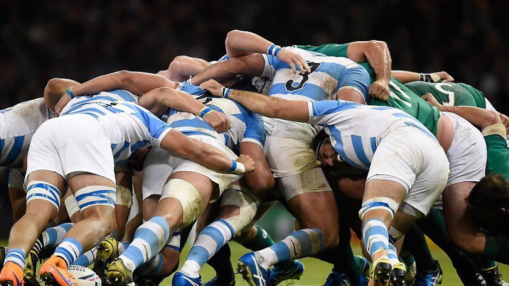 Argentinien setzte sich gegen Irland überraschend klar durch