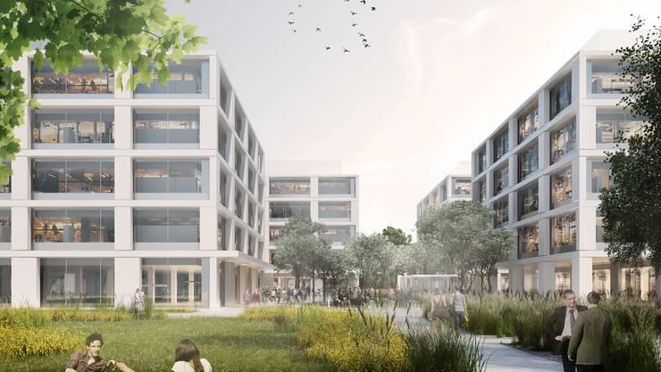 So sollen die vier Bürogebäude des Informatik-Zentrums in Kaiseraugst künftig aussehen.
