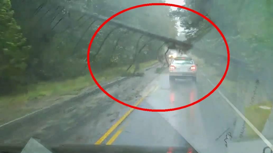 Autofahrerin wagte sich während Irma auf die Strasse – und kommt mit dem Schock davon