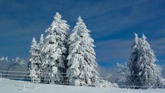 Winterlandschaft auf der Röti