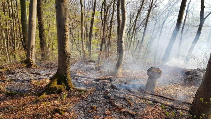 Waldbodenbrand in Nenzlingen.