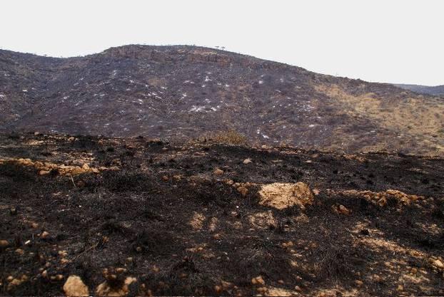 Die Khomas-Berge nach dem Veldfeuer