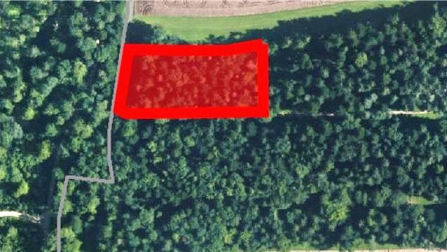 Rot eingefärbt das Gelände, auf dem der Wittnauer Waldfriedhof hätte eingerichtet werden sollen. – Foto: az