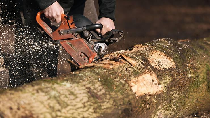 Die Raurica Wald AG ist in der Wald- und Holzwirtschaft in der Region tätig. (Symbolbild)