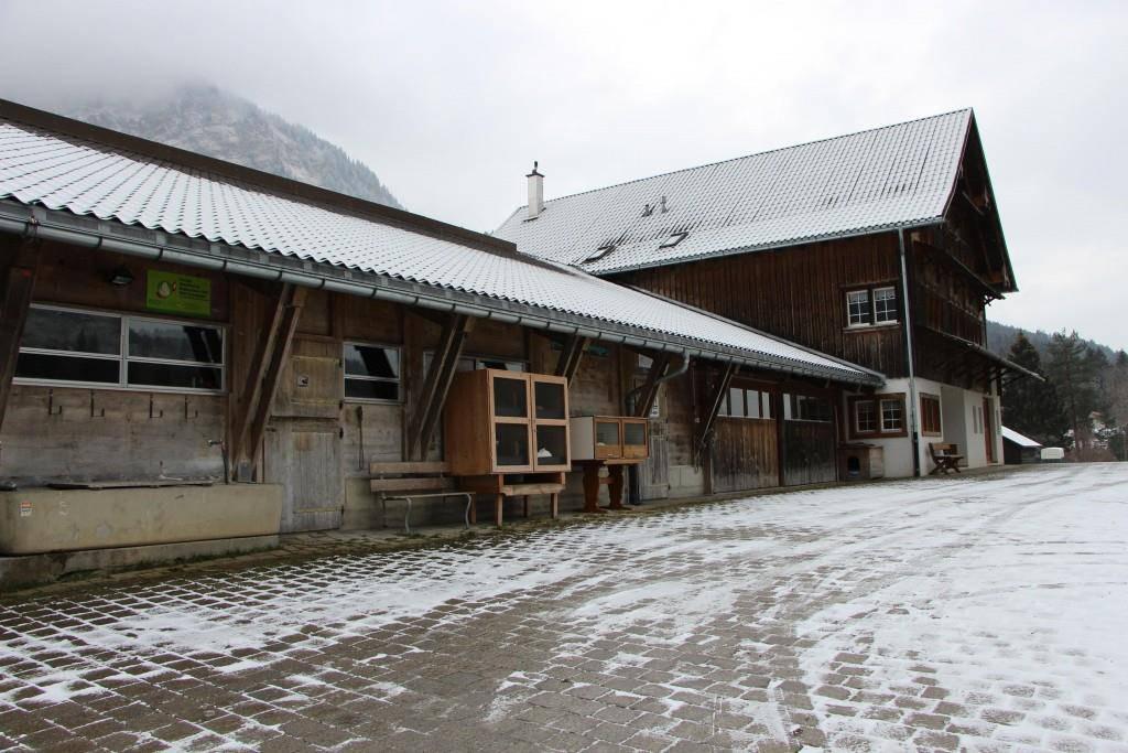 Die Weissküferei sieht auf den ersten Blick aus wie ein reiner Landwirtschaftsbetrieb. (© Angela Müller/FM1Today)