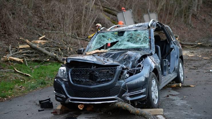 Vom Baum erschlagen: Der Lenker verstarb noch auf der Unfallstelle.