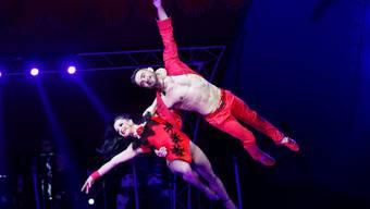 Impressionen vom Zirkus Nock
