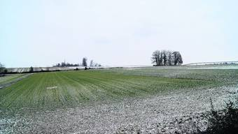 Absicht: Unter diesem Kulturland, westlich der Kiesgrube Buchrain (im Hintergrund), soll 400 000 Kubikmeter Kies abgebaut werden. Sl