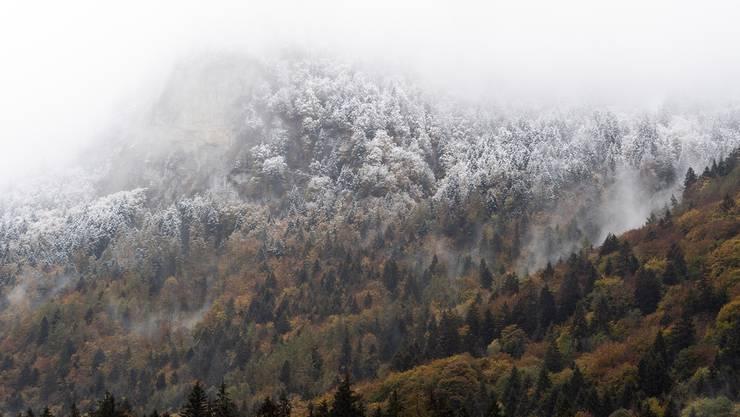 Eine Kaltfront verdrängt den Herbst mit winterlichen Temperaturen. (Archivbild)