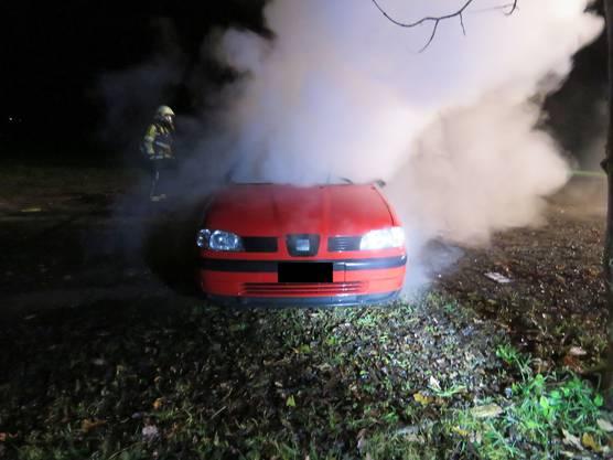 Eine Gruppe junger Männer dürfte in der Nacht auf Sonntag mehrere Sachbeschädigungen begangen haben. Dabei wurde auch ein Auto in Brand gesetzt.
