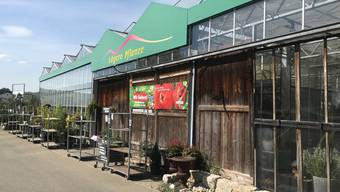 Verkauft bald keine Blumen mehr: Lägere Blueme und Pflanze in Wettingen
