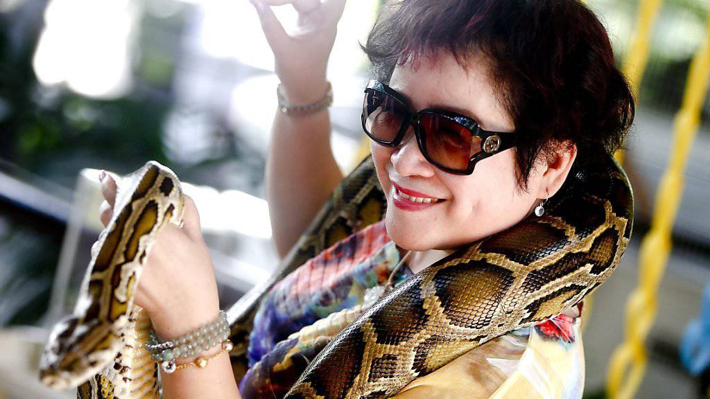 Und dann biss die Schlange zu: Einer chinesischen Touristin biss bei einer Schlangenshow in Thailand eine Python in die Nase. Die Frau kam mit dem Schrecken davon. (Symbolbild)