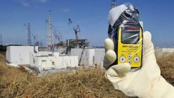 Blick auf das Atomkraftwerk in Fukushima (Archiv)