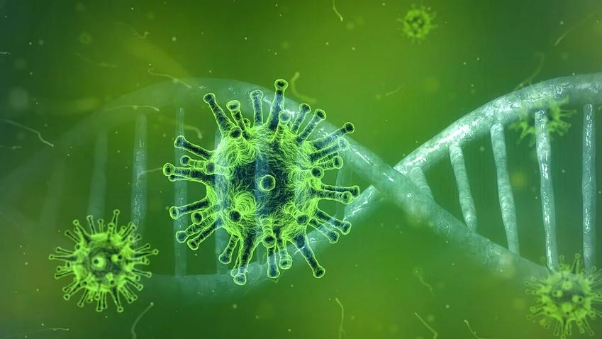 Alle wichtigen Links zum Coronavirus.