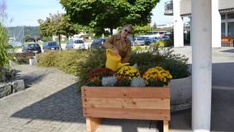 Dorothee Doswald giesst stolz die Gartenkiste vor dem Altersheim in Schöftland.