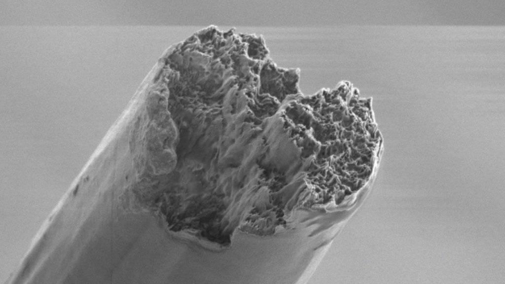 Rasterelektronenmikroskop-Aufnahme einer fertigen Faser.