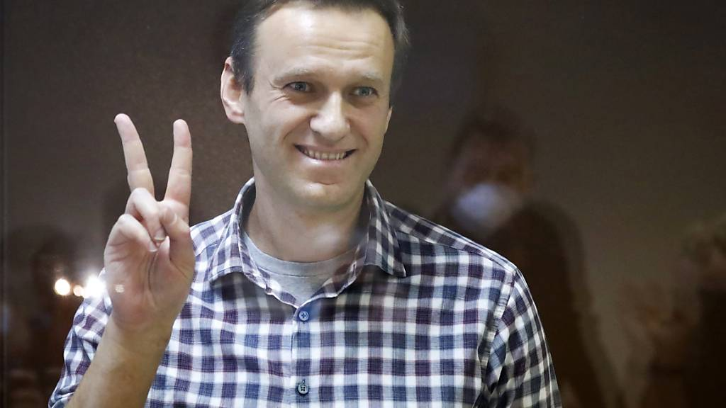 Oppositionsführer Alexej Nawalny steht in einem Käfig im Bezirksgericht. Foto: Alexander Zemlianichenko/AP/dpa