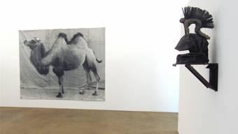 «Kamel» von Balthasar Burkhard, rechts ein Objekt von Franz Eggenschwiler.