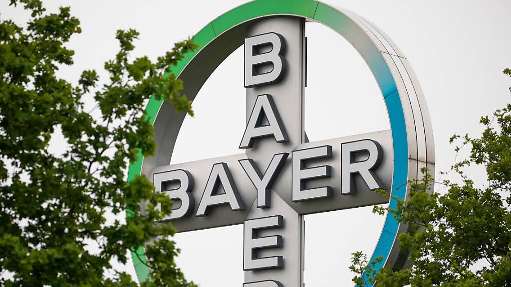 Afroamerikanische Landwirte streben Verbot von Bayers Roundup an