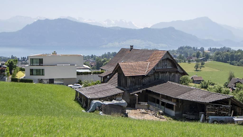 Schweine auf Bauernhof in Meggen sollen in Iglus wohnen