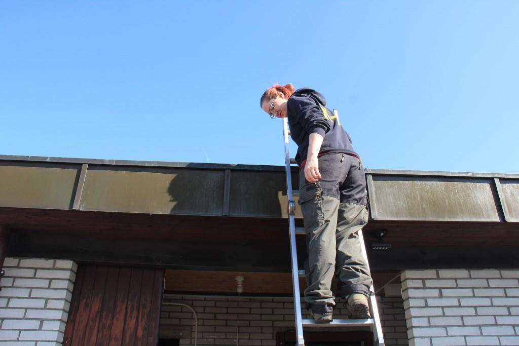 Freiwillige helfen tatkräftig mit (© FM1Today/Stephanie Martina)