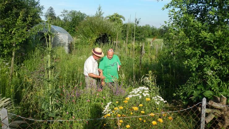 Hans Peter Althaus und Urs-Peter Stäuble vom Vogel- und Naturschutz Grenchen fachsimpeln im üppigen Garten, den Althaus «für sich selbst» gestaltet hat.