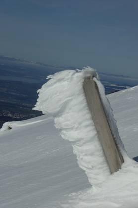 Winterzauber, Dossen