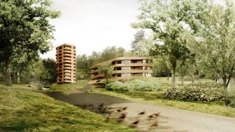 Der Quartierplan Buchlochweg erlaubt Hochbauten, damit der Natur möglichst viel Platz bleibt.