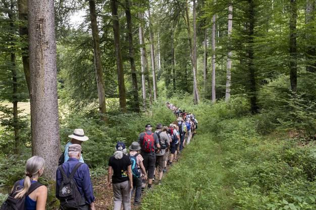 Impressionen von der 3. Etappe AZ-Leserwandern von Lohn-Lüterkofen nach Lüterswil, am 15. Juli 2018. Impressionen von der 3. Etappe AZ-Leserwandern von Lohn-Lüterkofen nach Lüterswil, am 15. Juli 2018.