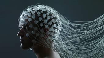 Hirngeflüster: Forscher wollen die Grenze zwischen Mensch und Maschine einreissen.
