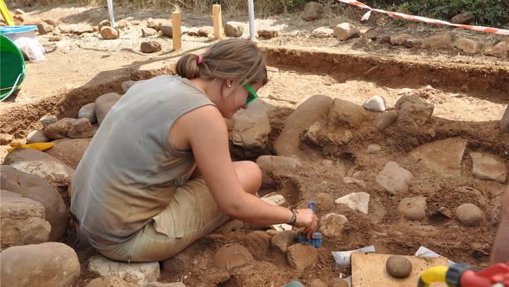 Studierende lernen in der kalabrischen Hitze das Handwerk der Archäologie von der Pike auf.