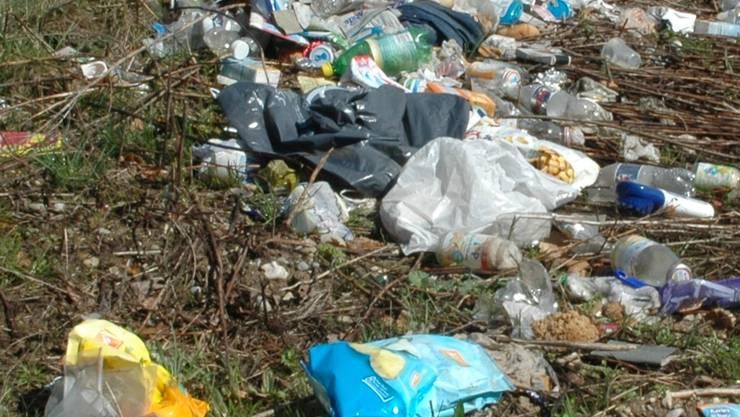 Abfallhaufen am Strassenrand sind ein teures Ärgernis.TO/Archiv