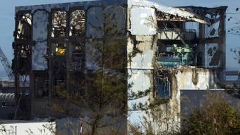Stark beschädigt: Fukushima-Reaktor 4 (Archiv)