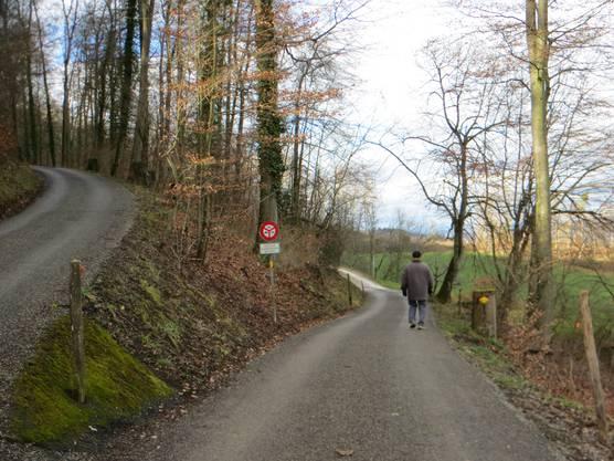 Man kann allen empfehlen, einfach die 1000 Schritte im Banne von Frenkendorf, Füllinsdorf, Pratteln und Liestal zu tun.