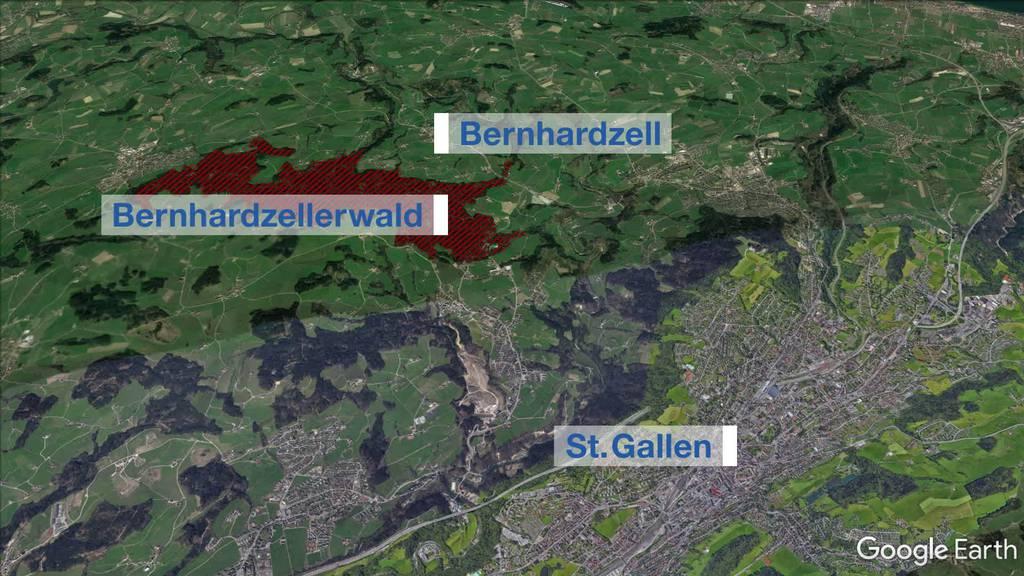 In der Nacht: Töffrowdies wüten in Bernhardzeller Wald