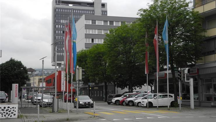 Die fünf Robinien auf der Solothurnstrasse sollen gefällt werden.