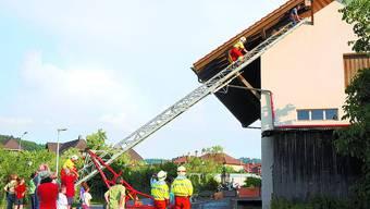 Spektakulär: Der Nistkasten in Lotzwil war nur mit der Feuerwehrleiter erreichbar. Foto: Peter Kohler, bob
