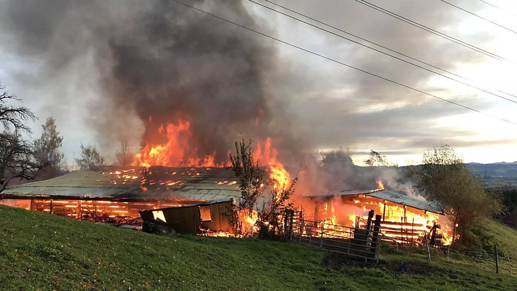 Bei einem Feuer in Oetwil am See ist eine Scheune komplett abgebrannt. Der Sachschaden wird auf mehrere hunderttausend Franken geschätzt.