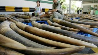 In Hongkong beschlagnahmtes Elfenbein (Archiv)