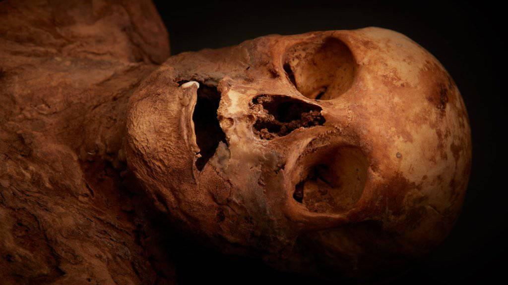 Basler Mumie mit Queen verwandt