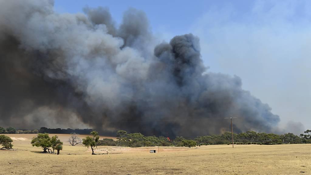 Keine Starts und Landungen mehr wegen Buschfeuern