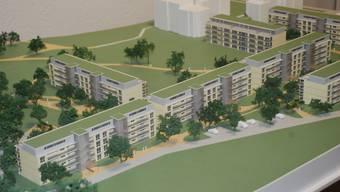 Neues Konzept: Der bis 2011 entstehende Wohnpark Rosengarten in Laufen bietet Rentnern neue Möglichkeiten des Lebens im Alter. (zvg)