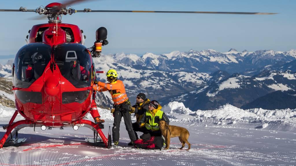 Lawinenhunde holen Flugerfahrung bei Rettungsübung