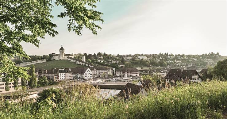 Blick auf Schaffhausen