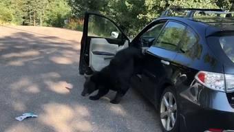 Wer sein Auto beim Verlassen nicht abschliesst, muss mit bösen Überraschungen rechnen. Davor warnt eine amerikansiche Polizeistation.