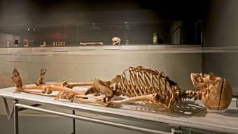 Soll ich meinen Leichnam nach dem Tod zur Verfügung stellen? Eine sehr schwierige und persönliche Entscheidung.