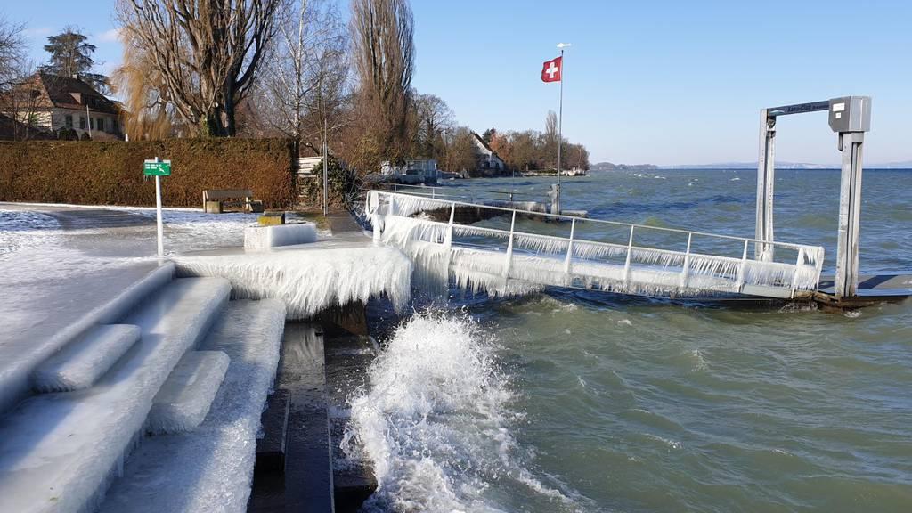 Eisige Kunstwerke der Natur am Bodensee