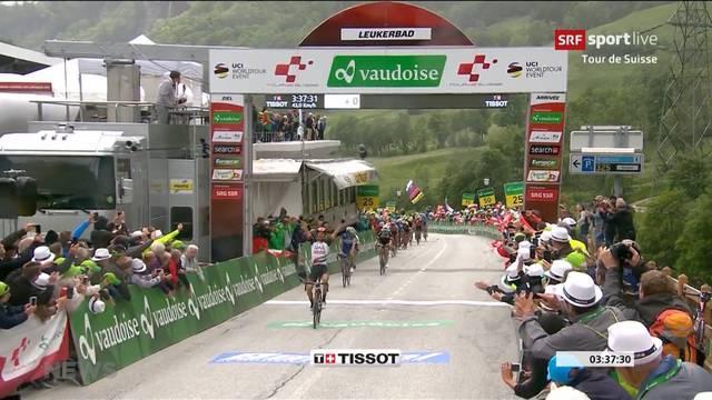 Tour de Suisse definitiv lanciert